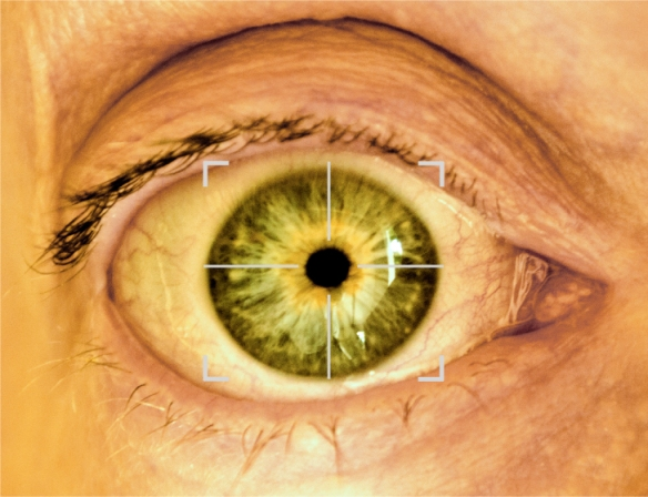 An image of a wide open eye with a cross hair on it indicating the iris is being scanned, it is a bit sic-fi and disturbing, quite blood shot