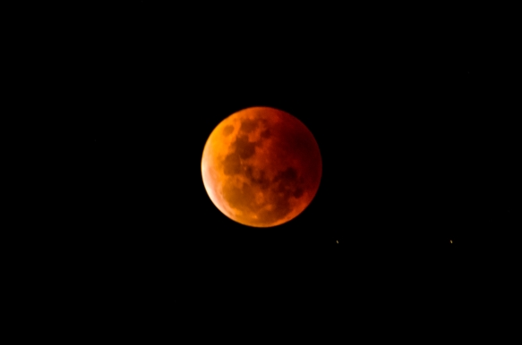 A full moon with a reddish orange cast in the night sky